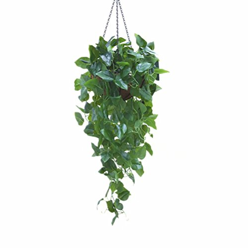 Arch Mirror Door Cabinet - 2 Pack Artificial Hanging Plants Fake Vines Silk Ivy Leaves Greenery Garland Morning Glory Artificial Flower Bushes with Coconut Palm Hanging Wall Baskets for Wedding Party Garden Wall Decoration