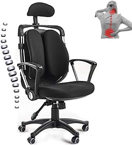 Ergonomics Home Office Desk Chair