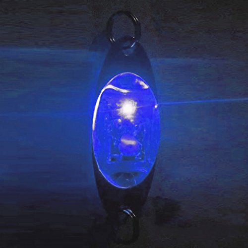 Leezo Stylish Fish Attractors New Shape Underwater Deep Drop Fishing Fish Lure Light LED Flashing...