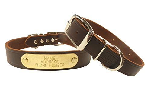 Warner Brand Cumberland Leather Dog Collar + Free Engraved Brass