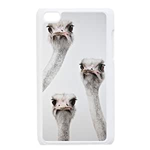 The Ostrich Unique Design Case for Ipod Touch 4, New Fashion The Ostrich Case