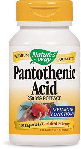 Nature's Way Pantothenic Acid 250 Milligrams Potency, 100 capsules. Pack of 5 bottles by Nature's Way