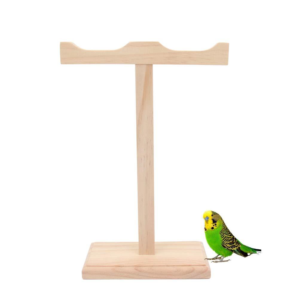 WJDM - Jaula para pájaros (tamaño Grande), diseño de Loros y ...