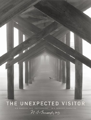 Unexpected Visitor Book - The Unexpected Visitor