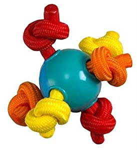 Pet Supplies : Pet Chew Toys : Petstages Hearty Chew