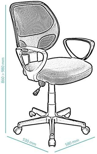 Acaza Chaise de Bureau Ergonomique, Siège à roulettes avec Hauteur réglable – Vert