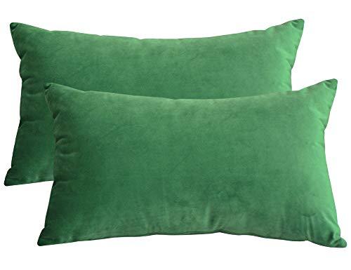 Lutanky Fundas de Almohada de Terciopelo Elegante Funda de cojín Suave Fundas de Almohada Decorativas sólidas para sofá Dormitorio Coche (Verde, ...