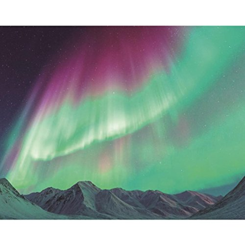 5D DIY Diamond Painting Embroidery , Aurora Tree Round Clearance Crystal Rhinestone Cross Stitch Kit Painting by Number Kits Pictures Arts for Adult Home Wall Decor 12×12 12×10 inch (C, ()