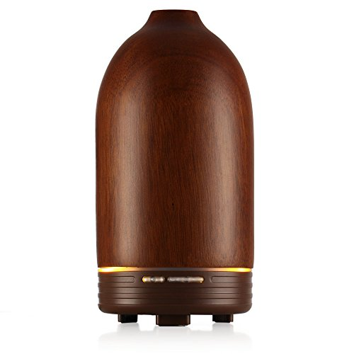 Flexzion Aromatherapy Essential Diffuser Humidifier