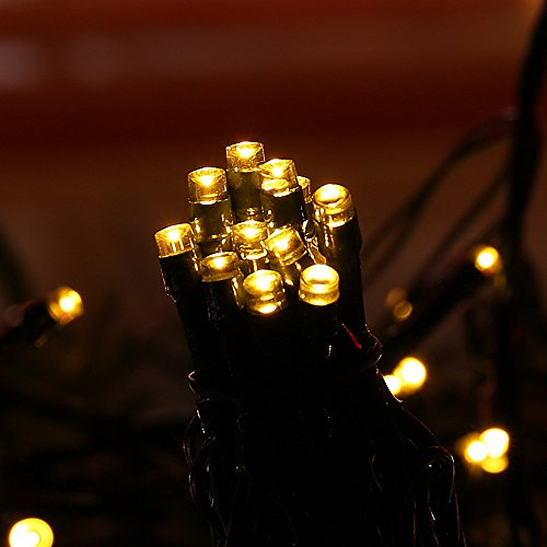 LUCKLED Saline 200 LED String Lights, 72ft Warm White Fairy - Import It All