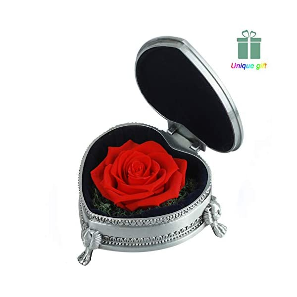 Preserved Roses – Preserved Flower, Handmade Red Rose Present, Exquisite Upscale Immortal Flowers Best Gift for Female Birthday, Anniversary, Valentine's Day, Christmas, Width 3.85″, Height 1.75″