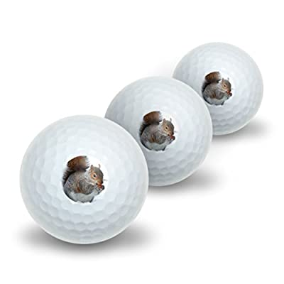 Squirrel Eating in Winter Novelty Golf Balls 3 Pack