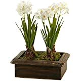 D & W Silks 171003 Paper Whites in Rectangle Wood Planter Box, Green/White/Brown