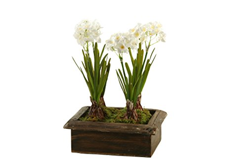 D & W Silks 171003 Paper Whites in Rectangle Wood Planter Box, Green/White/Brown (Paper White Silk Plant)
