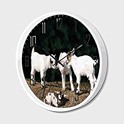Non Ticking Wall Clock Silent with Metal Frame HD Glass Cover,Animal,Cute Adorable Baby Sibling Goats Playing Eachother on a Solid Rock in a Farm,for Office,Bedroom,16inch