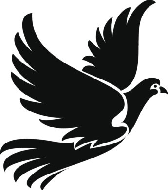 Pretty Black And White Exotic Bird Cartoon Vinyl Decal Sticker 12 Tall Dove Amazon In Car Motorbike