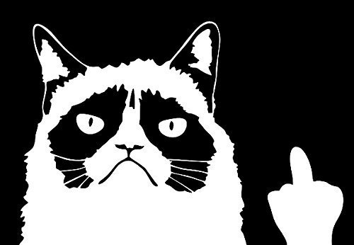 (Keen Grumpy Cat Meme Flippin' You Off Funny Decal | 6 X 4 in | White)