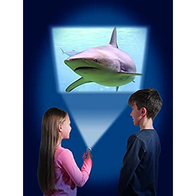 Brainstorm Toys Shark Torch & Projector: Toys & Games