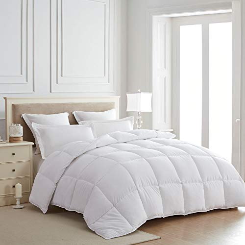 SEWARD PARK All Season Down Alternative Quilted Comforter, Hypoallergenic, Box Stitched, Plush Microfiber Fill, Duvet Insert or Stand-Alone Comforter, White, Twin Size