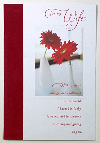 Valentine Card For Wife(for my Wife-With so many changes and challenges...)By American Greetings Each