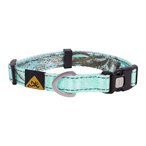 Xtra Small Dog Collar - 1