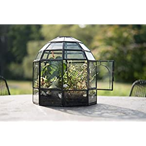 Urban Born Glass Terrarium Birdcage 9x9x10 Urban Black Steel Large
