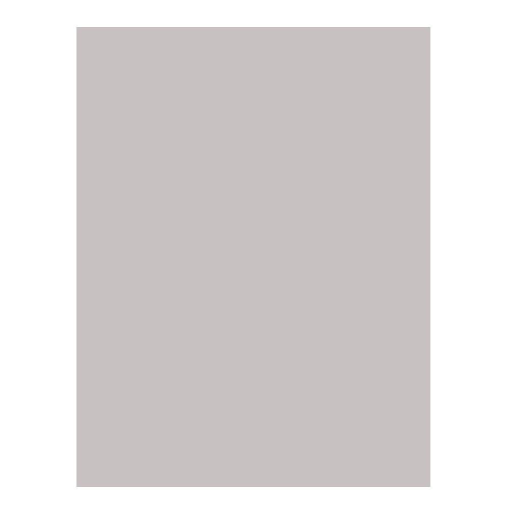 Campus University - Cartoncino 630505 da 200 g, 50 x 65 cm, confezione da 25, colore grigio chiaro Makro Paper SP.SL
