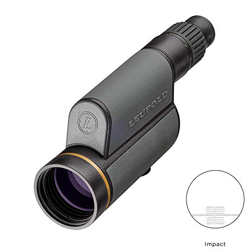 Leupold GR 12-40x60mm HD Gold Ring Spotting Scope (Best Spotting Scope For Planes)
