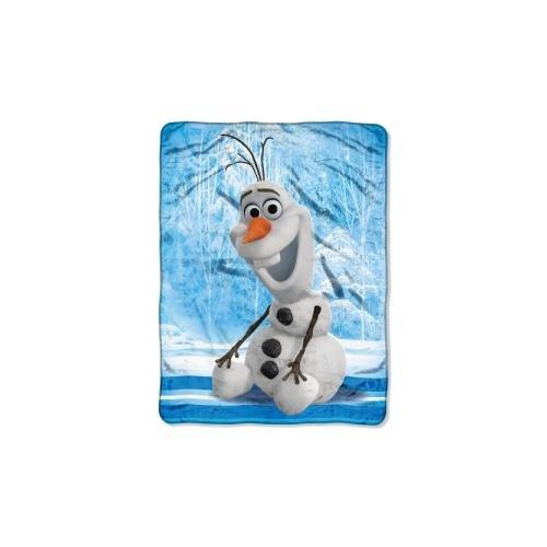 Frozen, Chills and Thrills Micro Raschel Throw Blanket, 46