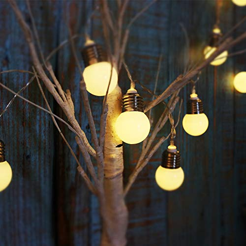20 LED Bulb Decorative String Light, Battery Operated Fairy Lamp Gift, Light Up Tree Decor for Nursery Room, Christmas, Birthday, Wedding Party-10ft (Warm White)