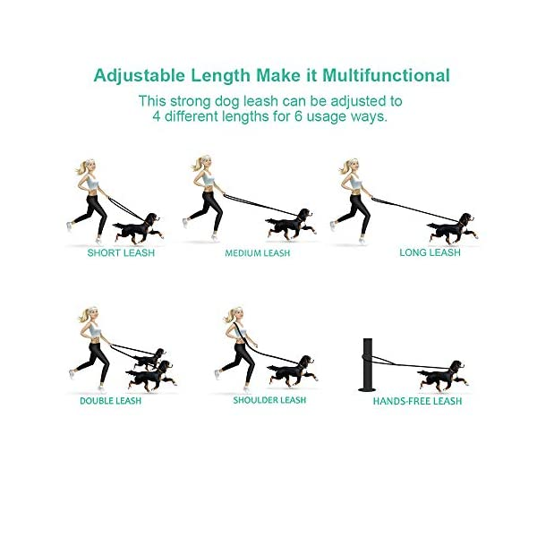 oneisall Hands Free Dog Leash,Multifunctional Dog Training Leads,8ft Nylon Double Leash for Puppy,Small & Large Dogs 4