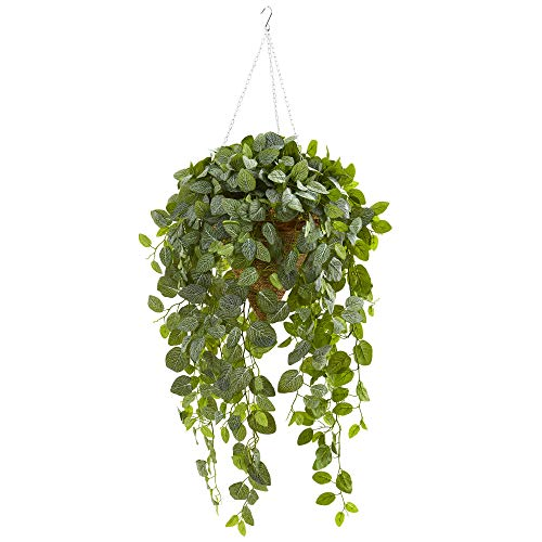 Nearly Natural 8546-GR Fittonia Artificial Hanging Cone Basket (Real Touch) Silk Plants ()