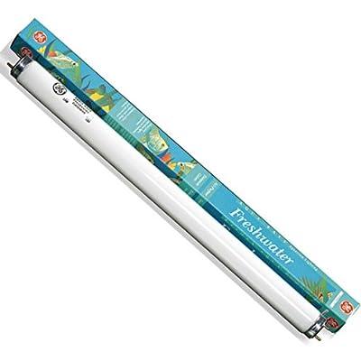 "GE 22907 - F15T8/AR/FR - 15 Watt T8 Fluorescent Freshwater Aquarium Light Bulb, 18"" Length"