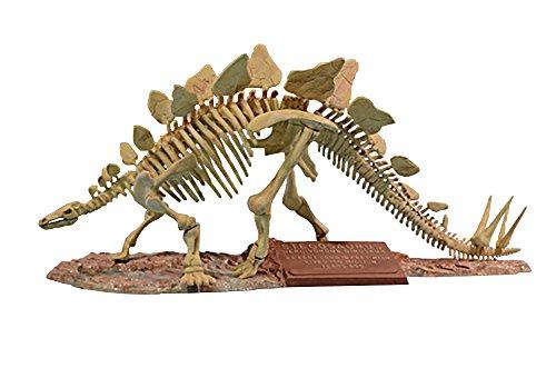 - Glencoe Stegosaurus Skeleton Model Kit