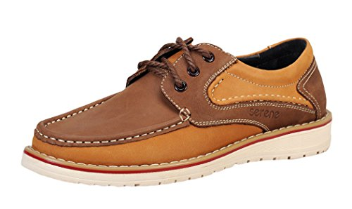 Serene Christmas Mens School Trendy Colored Fashion Sneakers(10 D(M)US, Brown)