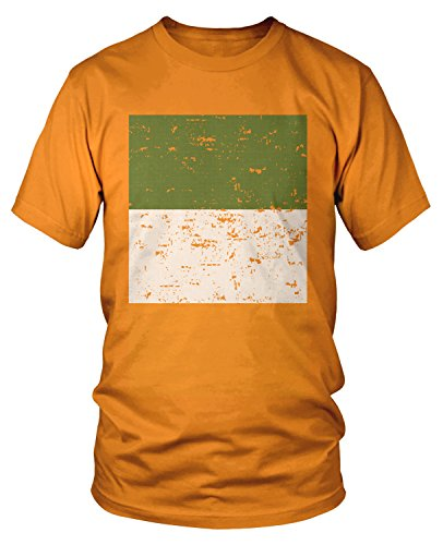 Orange Irish Flag (Amdesco Men's Oversized Faded Distressed Irish Flag T-shirt, Orange Large)