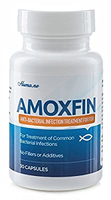AMOXFIN (500mg / 30 Capsules) for Fish by Amoxfin.com