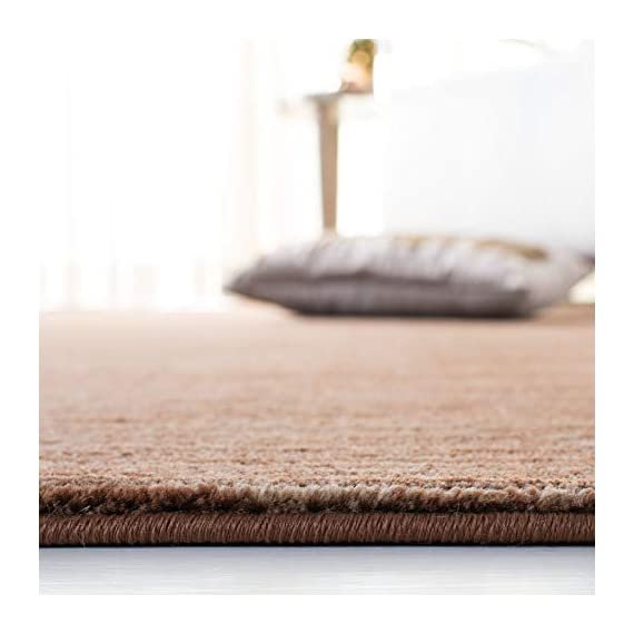 "Safavieh Vision Collection VSN606E Modern Contemporary Ombre Tonal Chic Runner, 2' 2"" x 6', Brown - Tone-on-tone colors give these rugs a clean contemporary vibe Versatile enough to decorate the bedroom, dining room, living room, foyer, or home office Refined power-loomed construction and enhanced polypropylene fibers ensure an easy-care and virtually non-shedding rug - runner-rugs, entryway-furniture-decor, entryway-laundry-room - 41fwWbBLUdL. SS570  -"