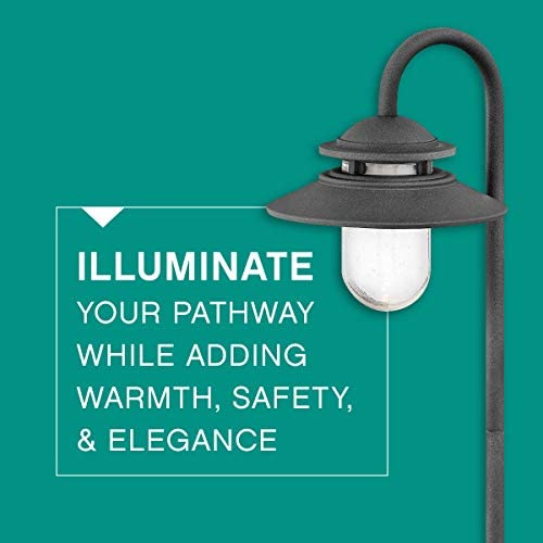 Hinkley Landscape Lighting Atwell Path Light Add Security to Outdoor Walkways and Paths with Ultra-Durable Path Lights, 12-Volt, 18w T-5 Light Bulb Not Included, Aged Zinc Finish, 1566DZ