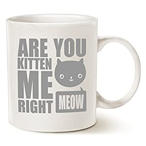 MAUAG Funny Cat Coffee Mugs, Fun Are You Kitten Me Right Meow...