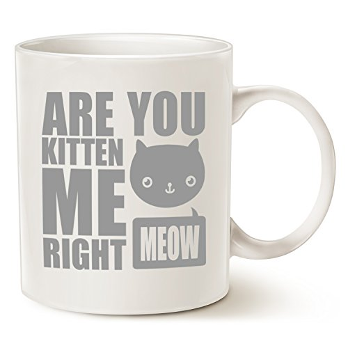 MAUAG Christmas Gifts Funny Cat Coffee Mugs, Fun Are You Kitten Me Right Meow Best Cat Lover Gifts Cute Cup, White 11 Oz