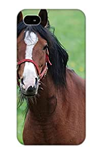 Citalz-5559-gcwigzz Special Design Back Animal Horse Phone Case Cover For Iphone 4/4s