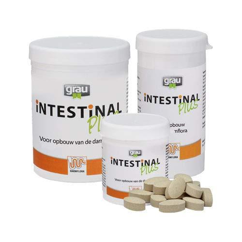 grey Intestinal Plus 300 tablets