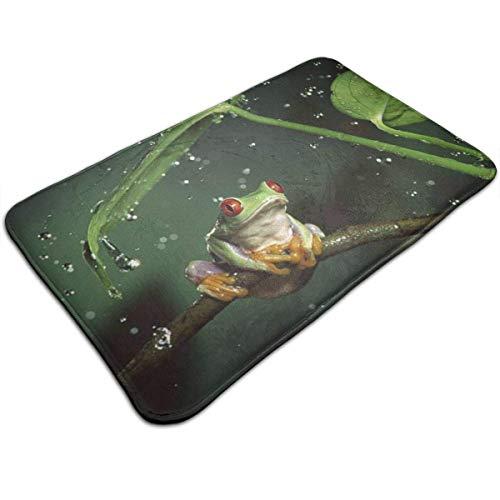 Mcdorty Bath Mats Non-Slip Mats Nature Rain Hylidae Jungle Animals Frogs Doormats Super Absorbent Indoor/Outdoor Uses 19.5