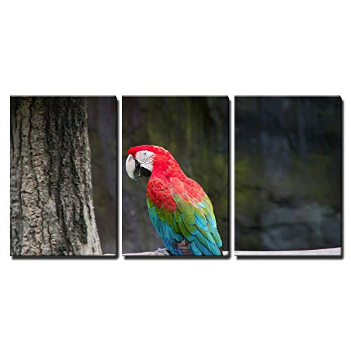 wall26 - 3 Piece Canvas Wall Art - Colorful macaw sitting on log - Modern Home Decor Stretched and Framed Ready to Hang - 16