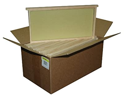 Mann Lake WW906 10-Pack Assembled Commercial Frames with Waxed Natural Rite-Cell Foundation, 9-1/8-Inch from Mann Lake