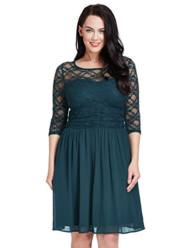 LookbookStore Womens Plus Size Peacock Lace Top Chiffon Skirt A-line Skater Formal Dress 16W
