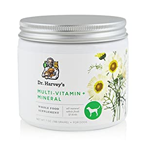 Dr. Harvey's Multi-Vitamin and Mineral Supplement – Herbal Supplement for Dogs, 7 oz. Jar