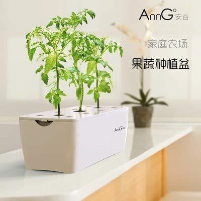 Amazon com : Zamtac Hydroponics Design Sky Garden DIY Grow
