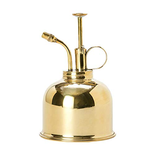 Leiyini Plant Mister Vintage Brass Mister Succulent Plants Watering Can Pot Decorative Brass Sprayer Watering Can Metal Plant Sprayer Mister Brass Gold Garden Tool for Flowers and Succulents